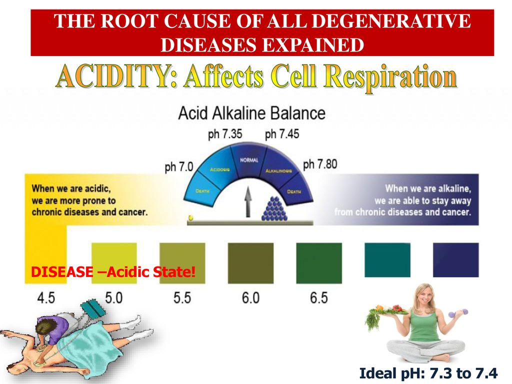 THE ROOT CAUSE OF ALL DEGENERATIVE DISEASES EXPLAINED - ppt