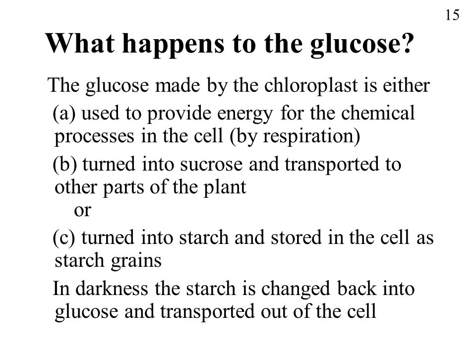 What happens to the glucose