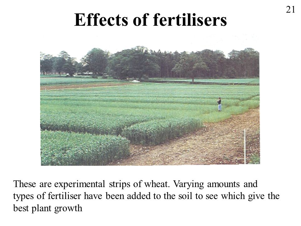 Effects of fertilisers