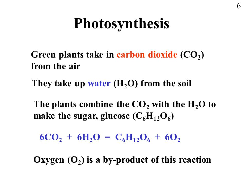 Photosynthesis Green plants take in carbon dioxide (CO2) from the air