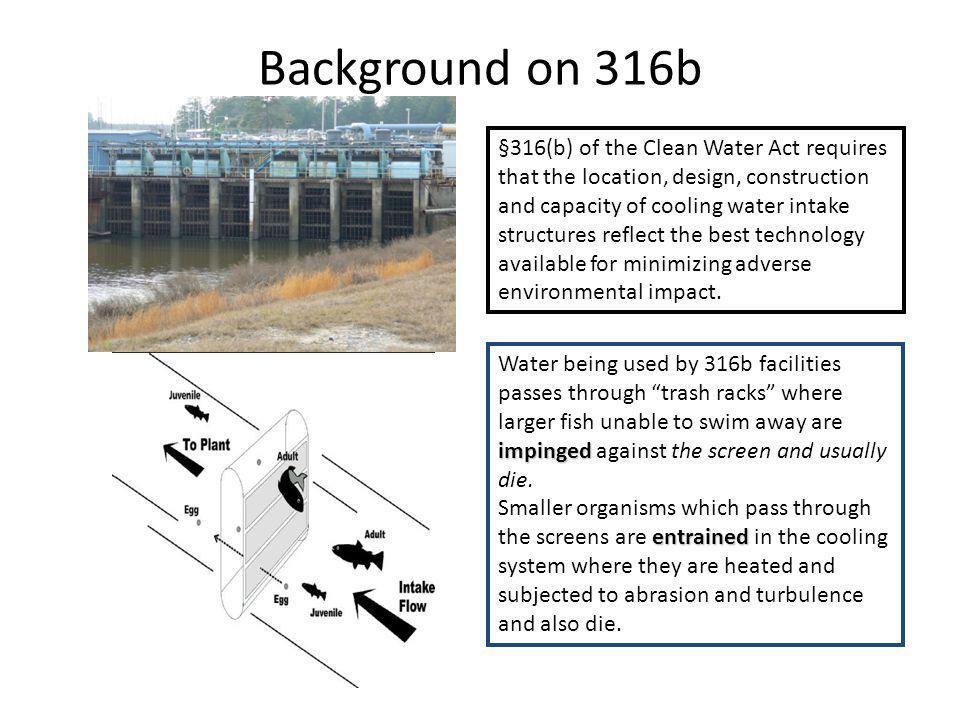 Background on 316b