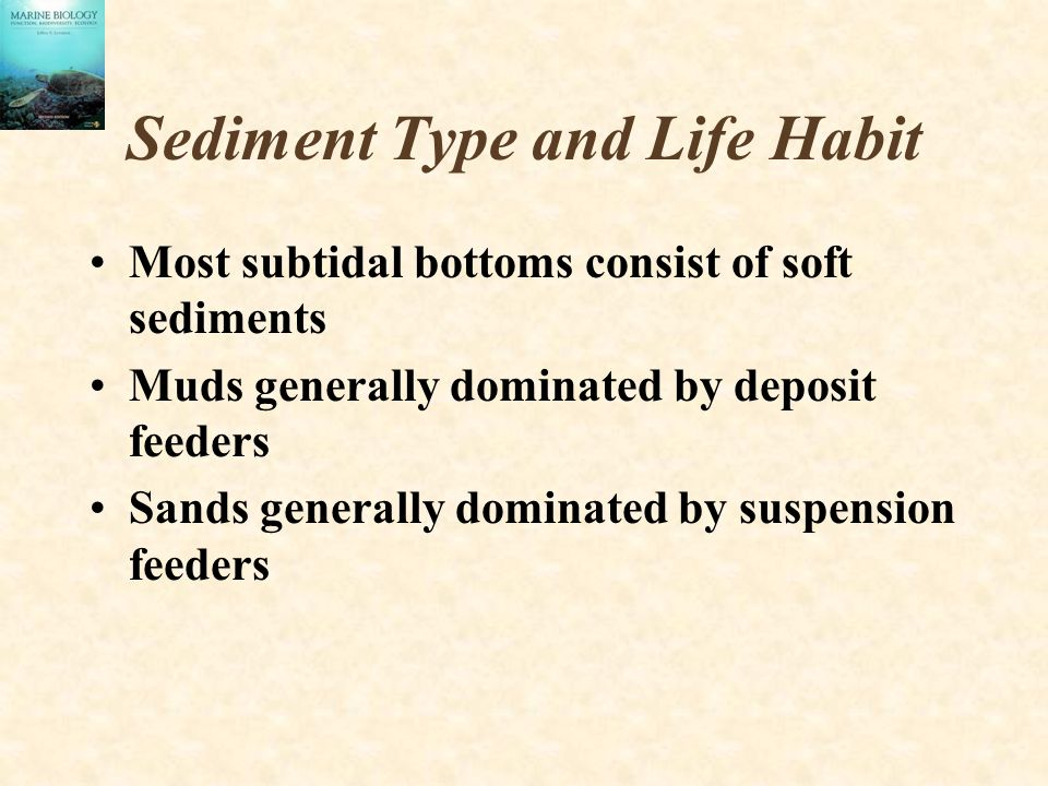 Sediment Type and Life Habit