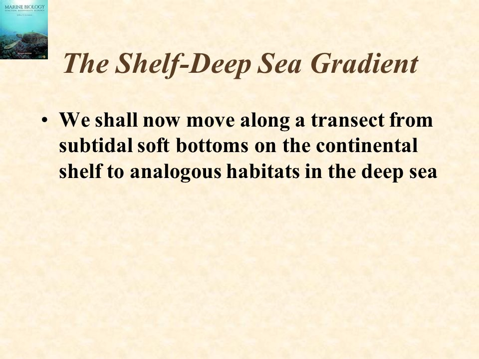 The Shelf-Deep Sea Gradient