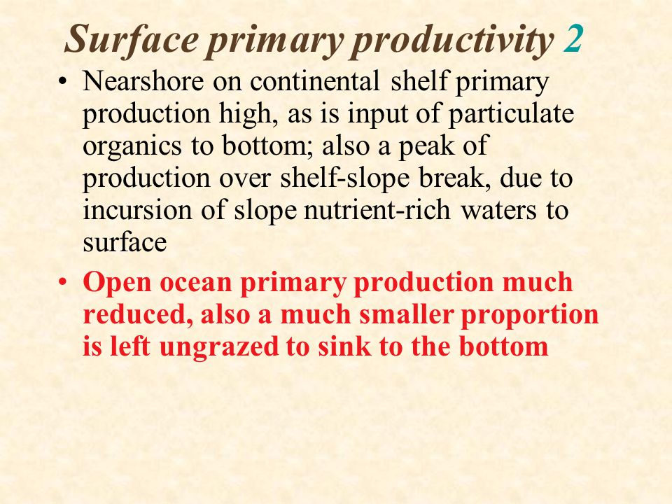 Surface primary productivity 2