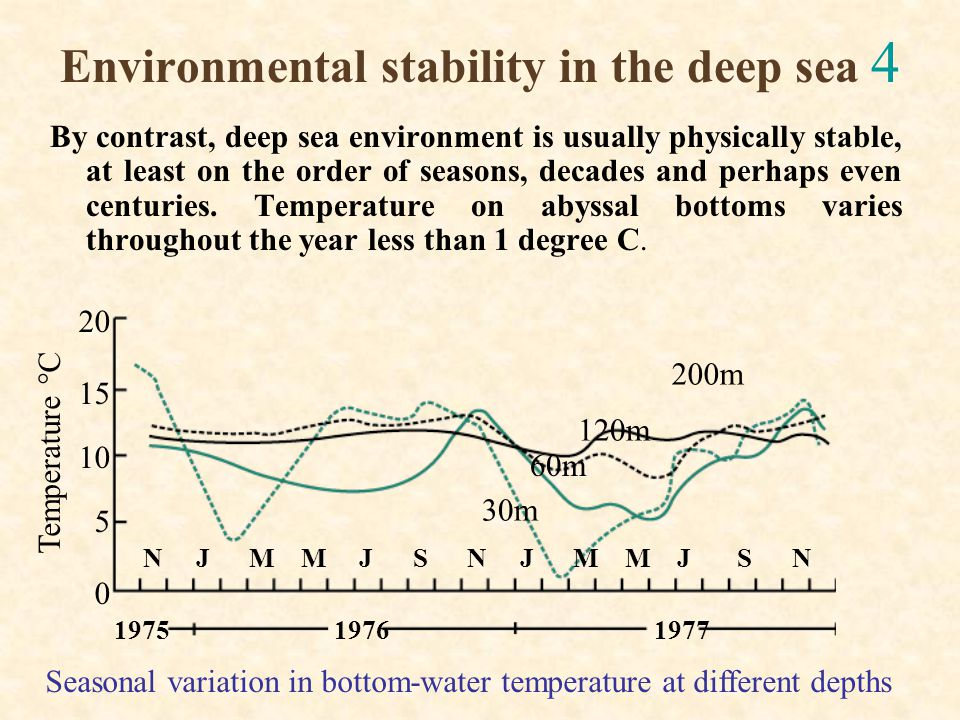 Environmental stability in the deep sea 4