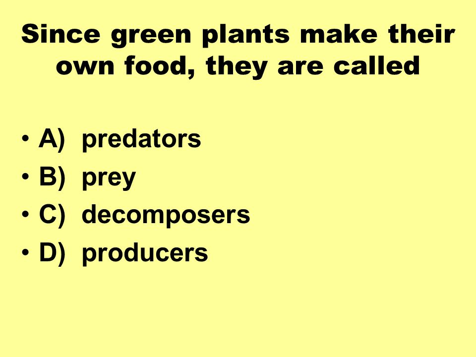Since green plants make their own food, they are called