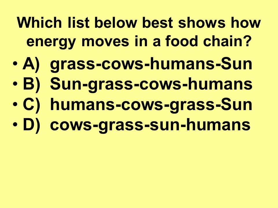 Which list below best shows how energy moves in a food chain