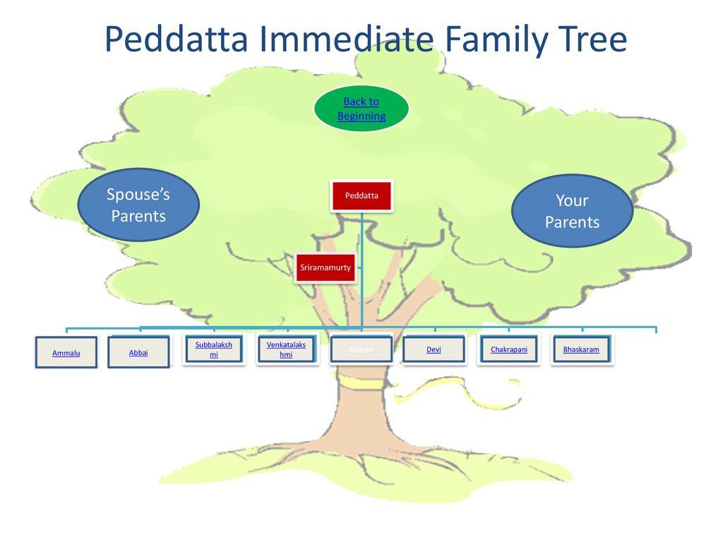 Peddatta Immediate Family Tree