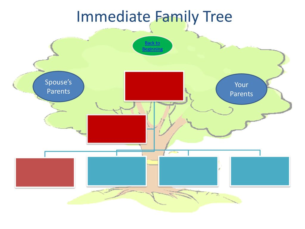 79 Immediate Family Tree Back To Beginning Spouses Parents Your