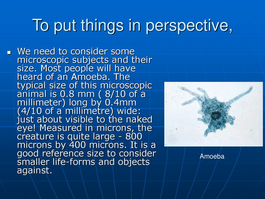 how to measure microscopic objects ppt download