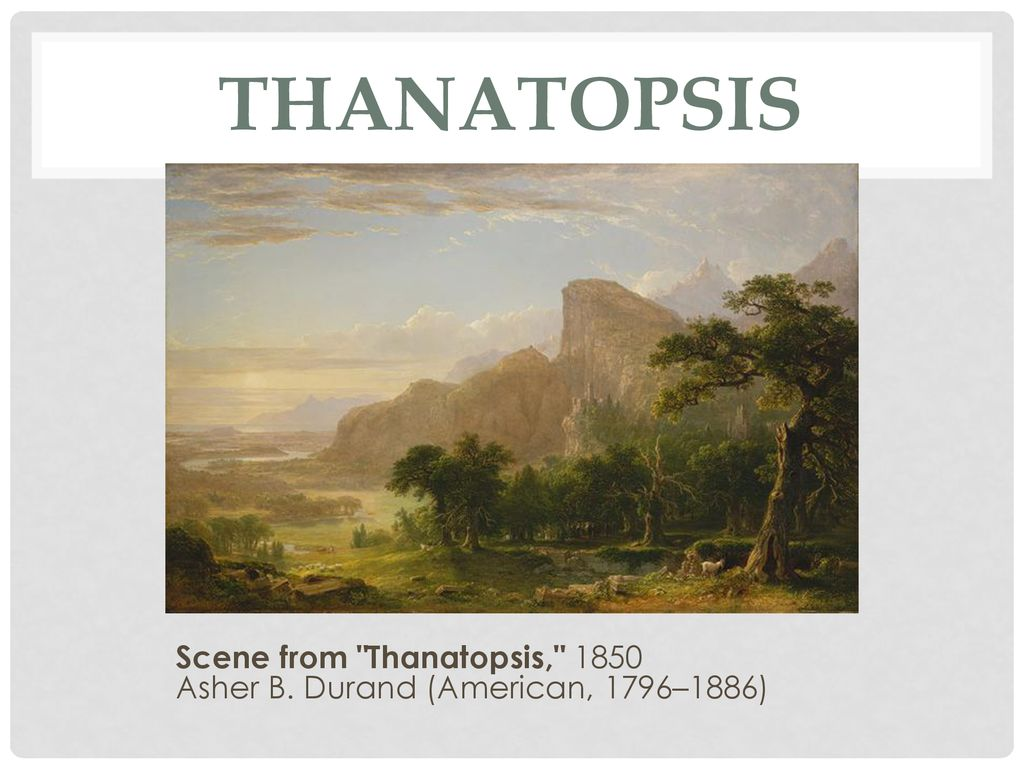 who wrote thanatopsis