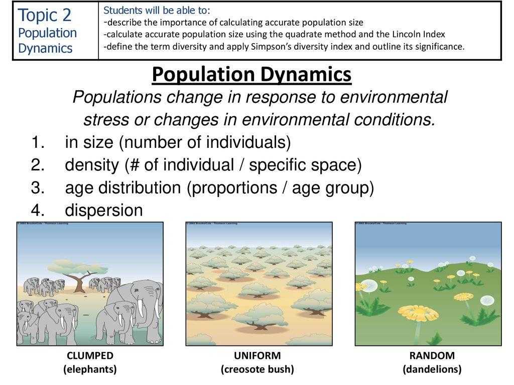 importance of population dynamics