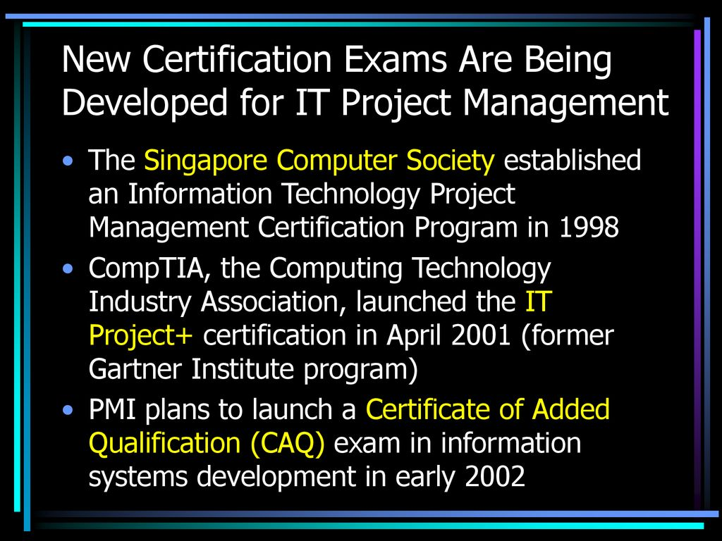 Information Technology Project Management Building The Profession
