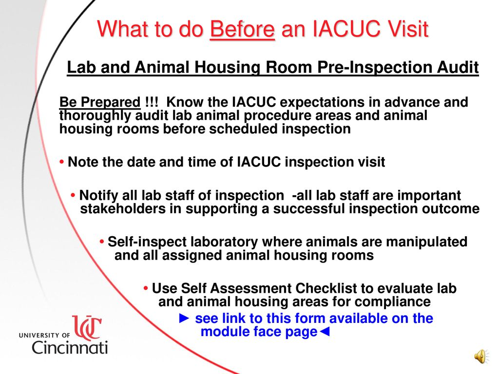 IACUC Semi-Annual Inspections - ppt download