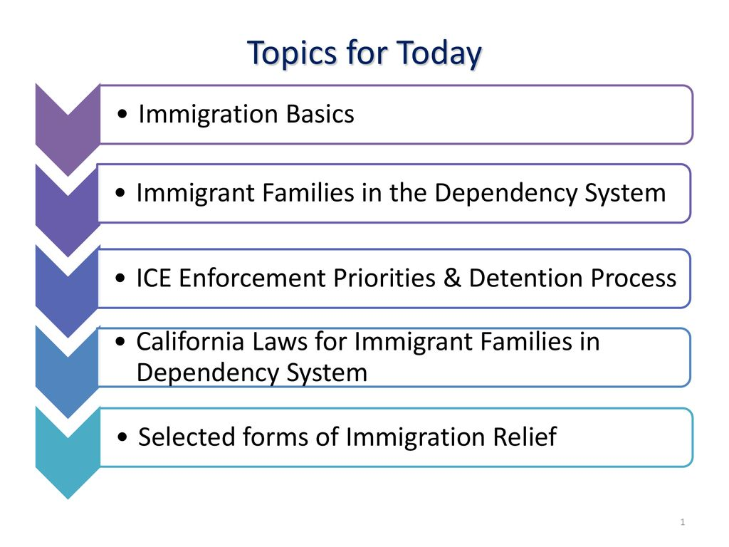 Topics For Today Immigration Basics Ppt Download