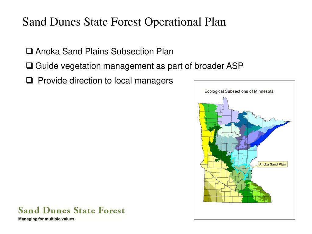 Sand Dunes State Forest - ppt download on zimmerman mn hunting zone map, imperial dunes map, sand ridge state park illinois, st. croix state park map, pillsbury state forest map, sand ridge state forest backpacking, cockaponset state forest trail map, mn forest map, zion national park trail map, mn state hunting map, taconic ridge state forest map, pink coral dunes state park utah map, sand on a map, sand ridge state forest map,