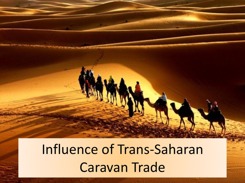 trans saharan caravan