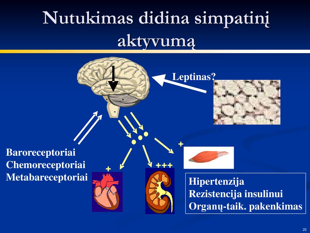 Arterinės hipertenzijos gydymas vaistų deriniais | rinkiskultura.lt