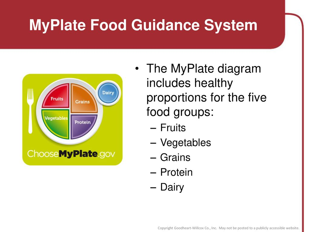 Usdas Myplate Food Guidance System Www Topsimages Com