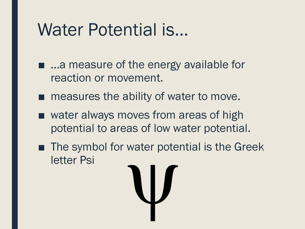 Osmosis And Water Potential Ppt Download