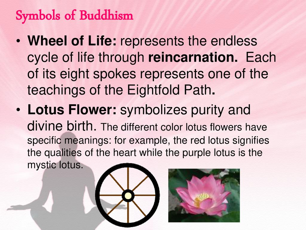 Lotus Flower Meaning Buddhism Images Flower Wallpaper Hd