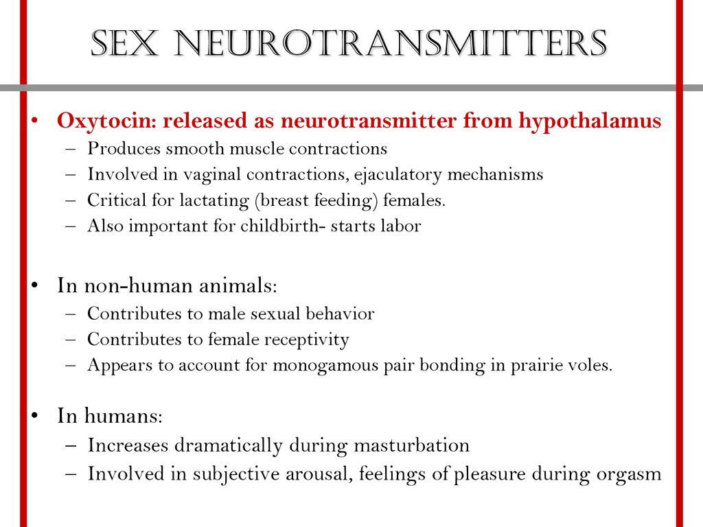 Sex neurotransmitters