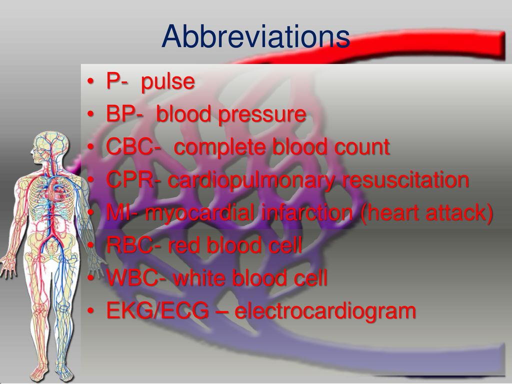 The Circulatory System Ppt Download Red And White Blood Cell Diagram Of Cells Abbreviations P Pulse Bp Pressure Cbc Complete Count