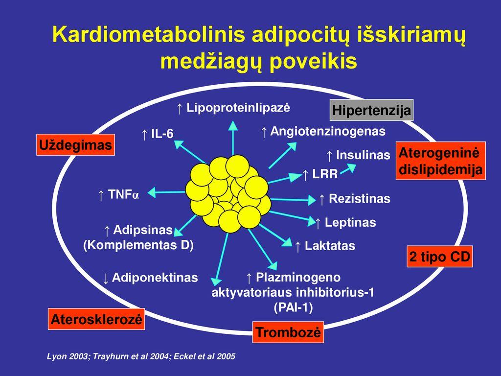 hipertenzija ir jos produktai)