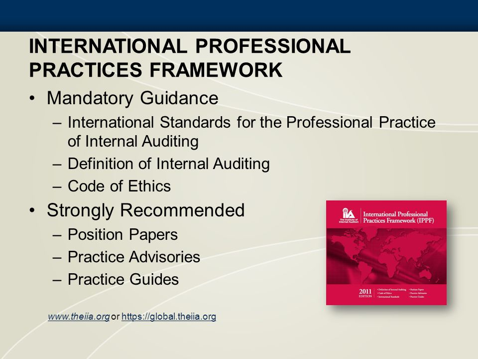 International Professional Practices Framework