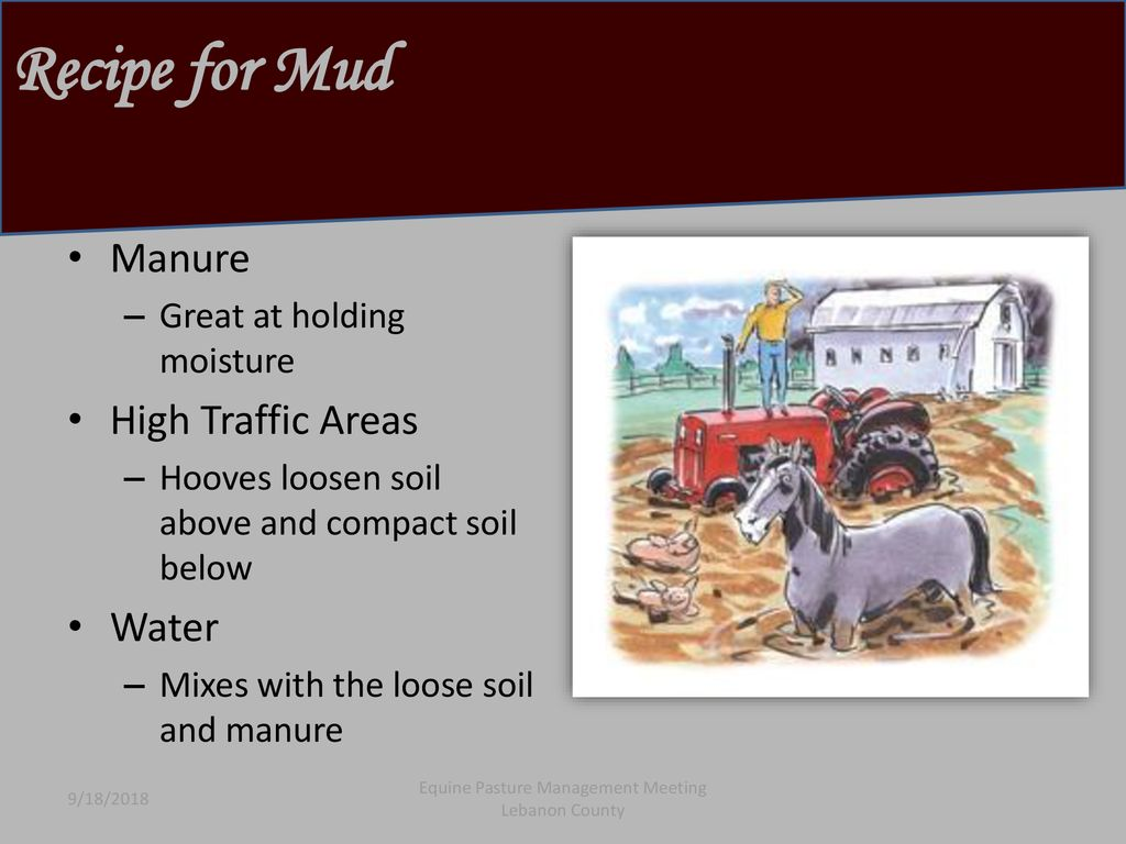 Horse Keeping On Limited Acres…Got Mud? Got Manure? - ppt