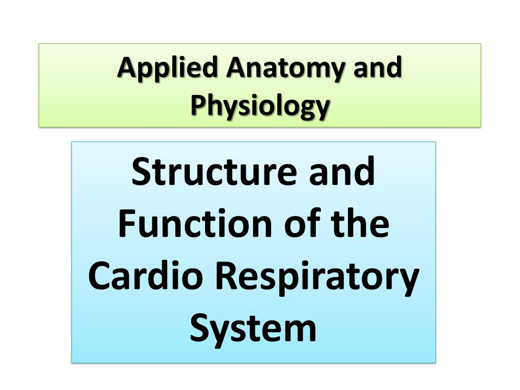 Applied Anatomy and Physiology - ppt download