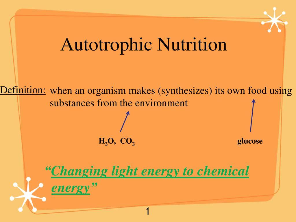 Autotrophic Nutrition Ppt Download