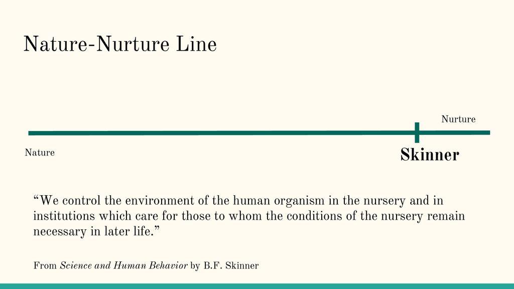 Nature Nurture Line Skinner