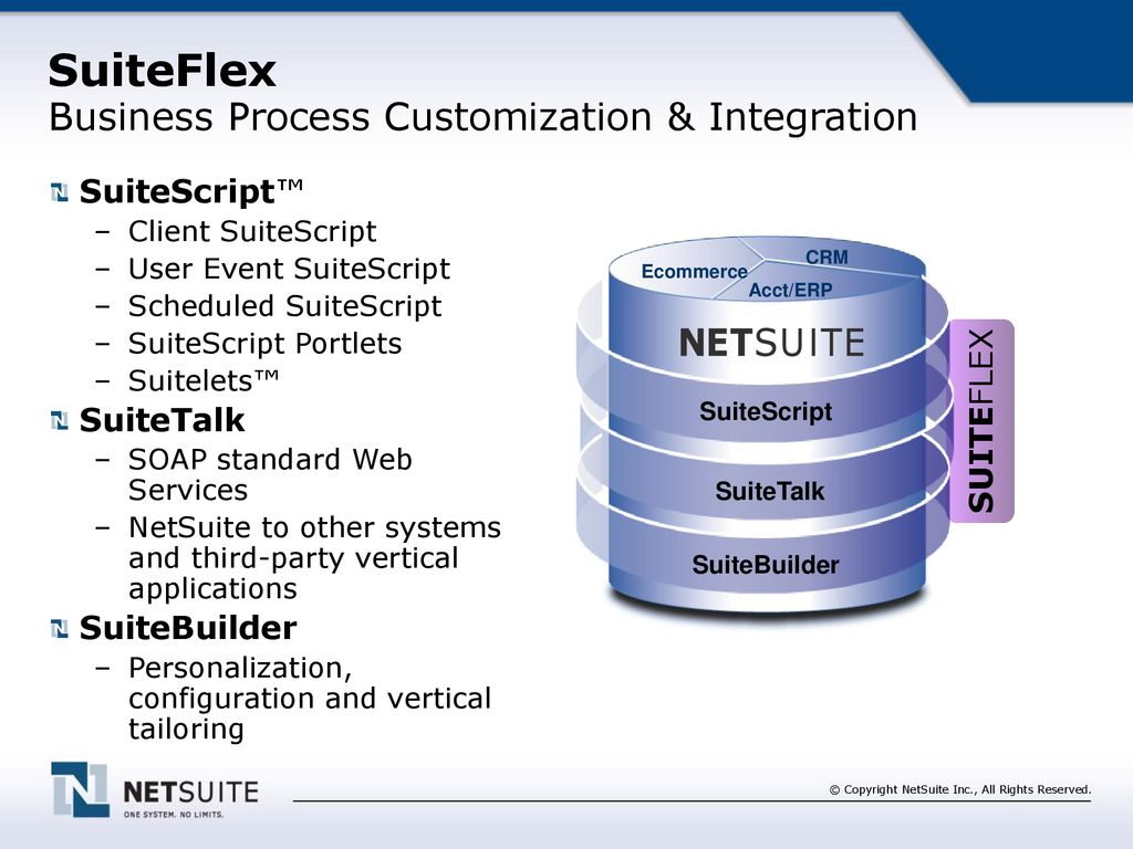 Talking Points The NetSuite Opportunity The NetSuite Channel Bio