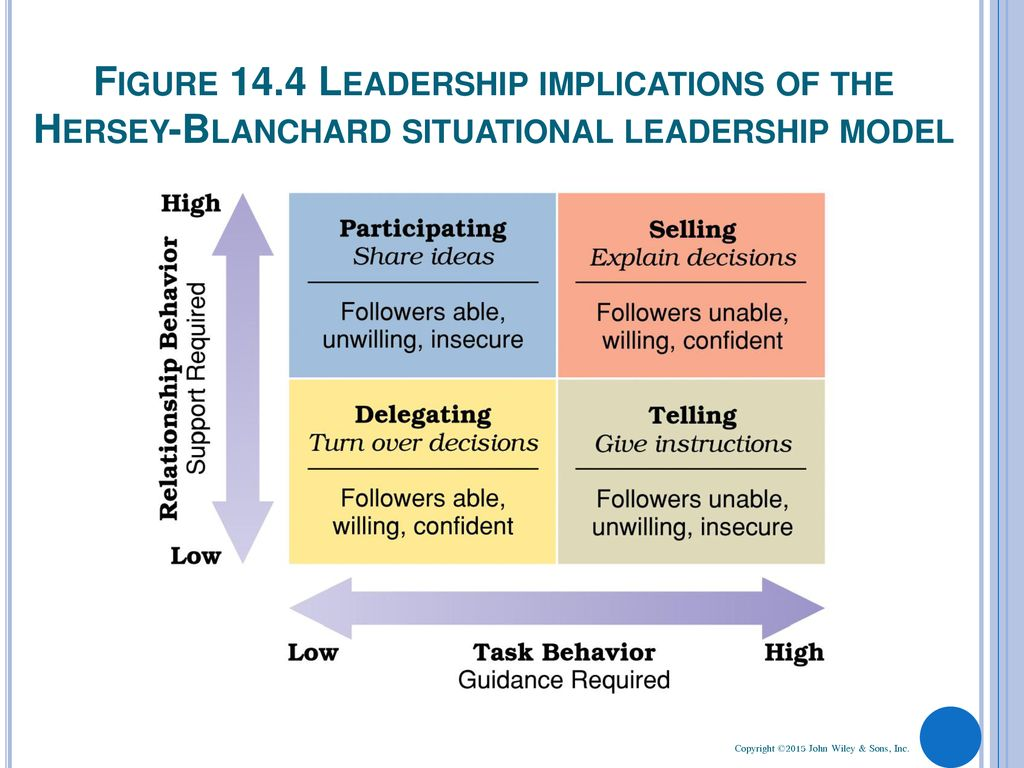Chapter 14 Leading And Leadership Development Ppt Download