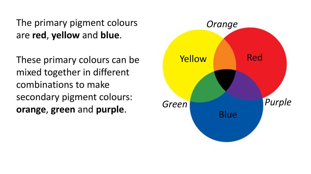How Do We See Colour Ppt Download
