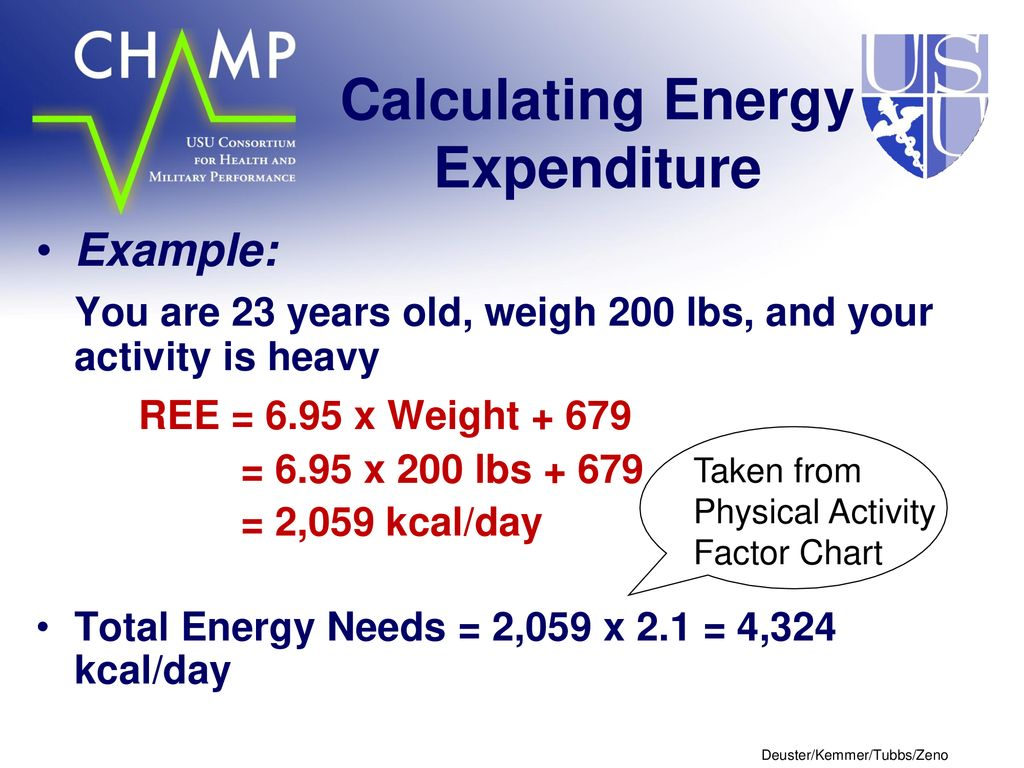 13 Calculating Energy Expenditure