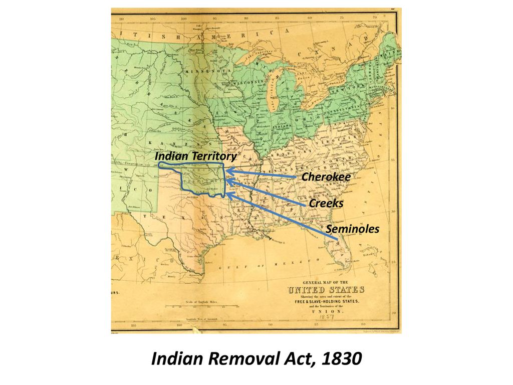Causes and Effects of the Seminole Wars - ppt download