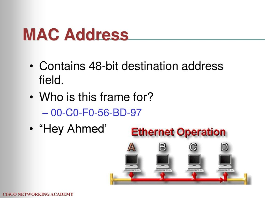 Broadcast and Collision Domains - ppt download