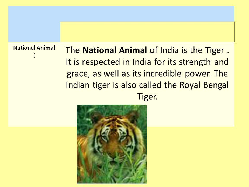 National Animal (