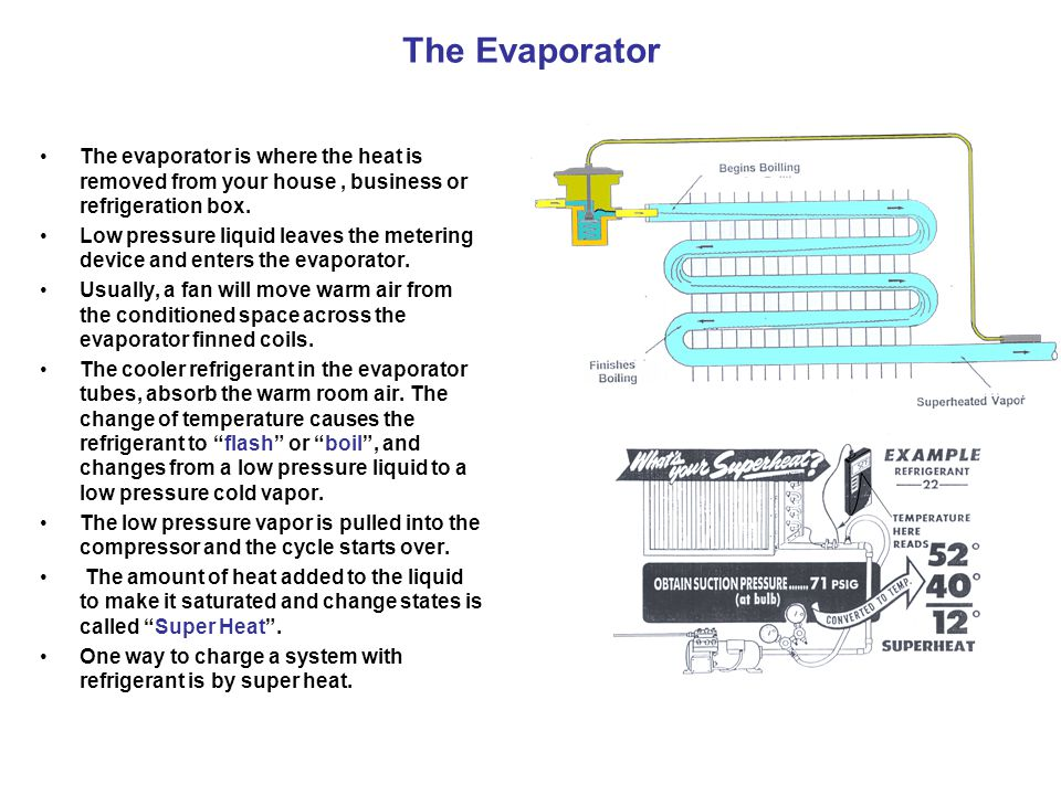 The Evaporator The evaporator is where the heat is removed from your house , business or refrigeration box.