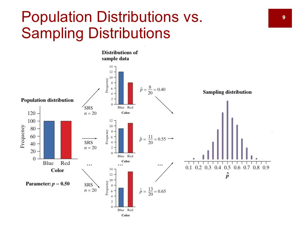 Population Distributions vs. Sampling Distributions