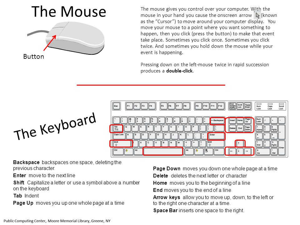 The Mouse The Keyboard Button