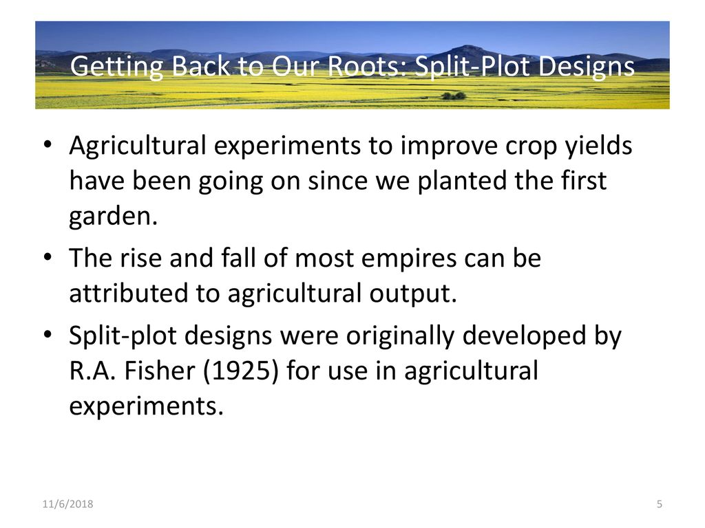 Getting Back to Our Roots - ppt download