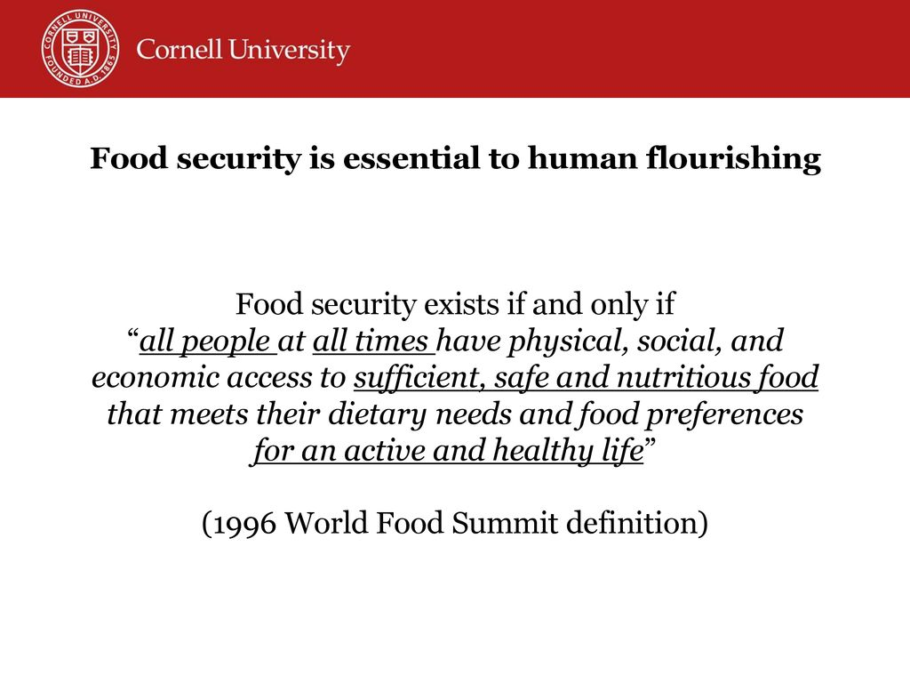 meeting the global food security challenges of the 21st century