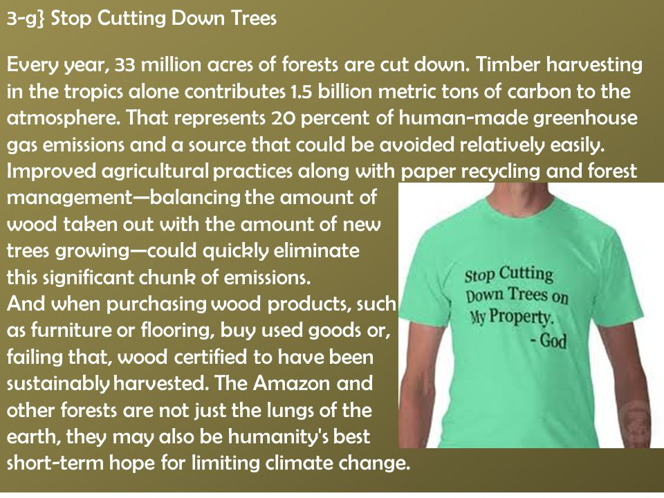 3-g} Stop Cutting Down Trees