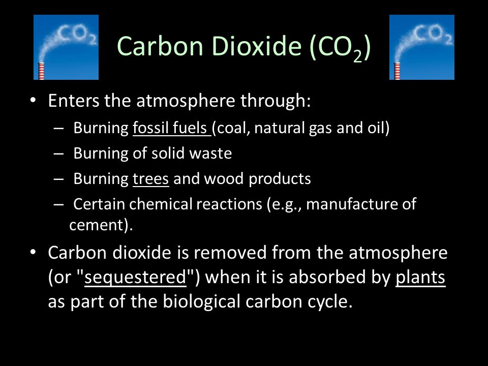 Carbon Dioxide (CO2) Enters the atmosphere through: