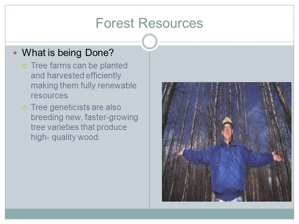 Forest Resources What is being Done