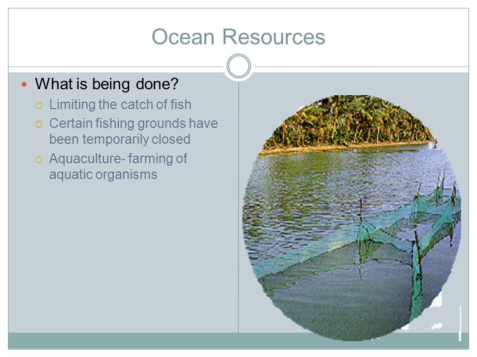 Ocean Resources What is being done Limiting the catch of fish