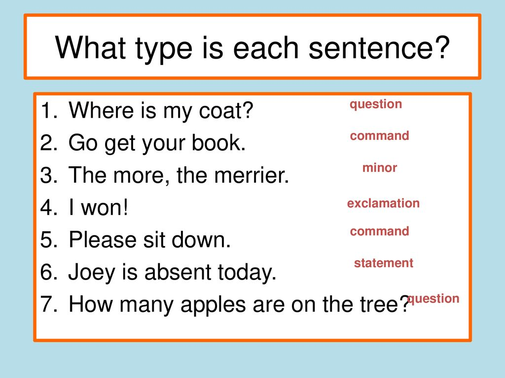 what type is each sentence